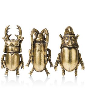 COCO Maison Set of 3 Insects